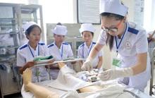 Nhật Bản đánh giá cao điều dưỡng, hộ lý Việt Nam