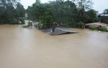 Philippines phải dùng cả xe đổ bộ tấn công để cứu hộ trong bão Vamco