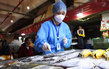 Trung Quốc phát hiện SARS-CoV-2 trên bao bì đông lạnh nhập khẩu