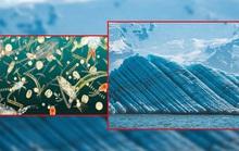 Vật chất lạ từ đáy biển có thể khiến cả Trái Đất lạnh đi