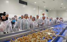 Tăng cường đầu tư cho chế biến rau quả