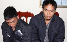 Bắt 2 ổ nhóm gây ra gần 50 vụ trộm chó có trang bị dao, súng chống trả