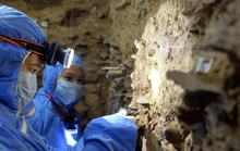 Phát hiện nơi ẩn nấp chưa từng biết của loài người khác ở châu Á