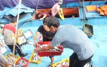 """Bình Định: Ngư dân đánh bắt xa bờ """"méo mặt"""" vì đá tan, cá hỏng"""