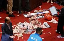 Hỗn chiến... lòng heo giữa các nhà lập pháp Đài Loan