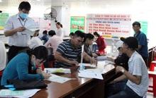 Hướng đến việc làm bền vững cho người lao động