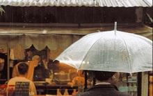 Đi đâu vào ngày mưa ở Đà Lạt?