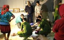 Đắk Nông: Hơn 1 tháng bắt 2 vụ ma túy khủng