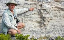 Tổ quái thú hóa đá tiết lộ bí ẩn giống loài 115.000 năm vẫn sống khỏe