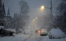 New York và bờ Đông của Mỹ bị tuyết dày cả mét vùi lấp