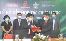 Hợp tác 4 bên để nâng cao vị thế hàng Việt