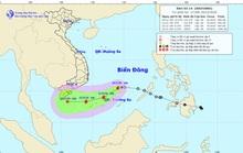UBND TP HCM ra công văn khẩn, chỉ đạo ứng phó bão số 14