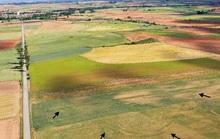 Radar phát hiện 66 căn cứ ma giữa đồng, mắt thường không nhìn thấy