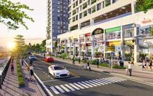 Shophouse D-Aqua hút thương hiệu lớn, đảm bảo lợi nhuận cho nhà đầu tư