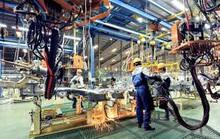 Bạc Liêu: Hơn 83 tỉ đồng hỗ trợ lao động đi làm việc ở nước ngoài