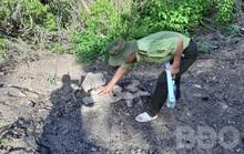 Để xảy ra phá rừng, kiểm lâm địa bàn bị kiểm điểm rút kinh nghiệm