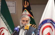 Nhà khoa học hạt nhân Iran bị bắn 13 phát, vợ ngồi cách 25 cm không hề hấn