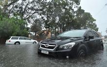 Úc: Mưa lớn dập tắt cháy rừng khủng, làm người dân chạy lũ khẩn cấp