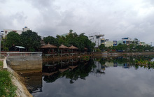 Dân yêu cầu chính quyền Đà Nẵng xử lý dứt điểm ô nhiễm để giữ uy tín TP đáng sống