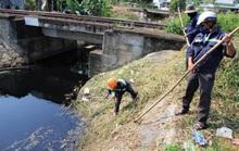 Đà Nẵng: Sẽ có giải pháp xử lý ô nhiễm tại hồ Bàu Trảng trong tuần đến