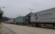 Hơn 700 container đang ùn ứ vì dịch Covid-19, nông sản vẫn ùn ùn lên cửa khẩu