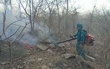 Bình Thuận: Rừng Tà Cú phát cháy
