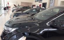 Cởi trói quy định nhập khẩu, kỳ vọng giá xe giảm