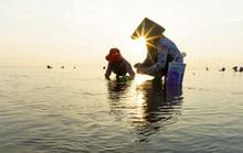 Cuộc thi ảnh Nét đẹp lao động: Góp sức cho đời