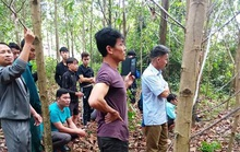 Quảng Bình: Một người đàn ông chết trong tư thế treo cổ ở vườn keo