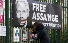 Luật sư tố việc ông chủ WikiLeaks bị còng tay và bắt khoả thân