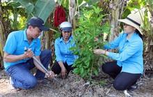 Đồng Tháp: Trồng 1.000 cây xanh tạo cảnh quan môi trường