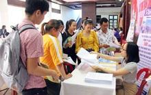 Thừa Thiên - Huế: Giải quyết việc làm cho 16.000 người lao động