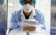 """Virus corona biến đổi """"bất thường"""" ở một ổ dịch gia đình Quảng Đông"""