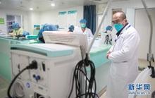 Mắc bệnh sắp liệt, bác sĩ viện trưởng tả xung hữu đột giữa tâm dịch Vũ Hán