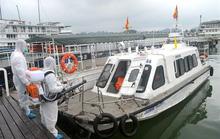 Covid-19: Tạm dừng hoạt động tham quan vịnh Hạ Long