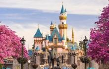 Disney đóng cửa toàn bộ công viên, đóng băng hoạt động du thuyền