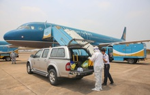 Máy bay Vietnam Airlines sẽ bay rỗng từ châu Âu về Việt Nam