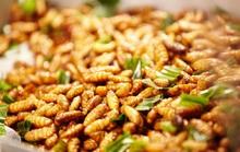 Những đặc sản của Việt Nam khiến nhiều thực khách e dè