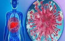 Làm sao để viêm gan không thành mạn tính?