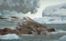 Tàu thám hiểm Nam Cực lạc đến hoang đảo ma phủ đá hoa cương