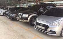 Lần đầu đấu giá hạn ngạch nhập khẩu ôtô cũ