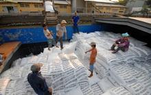 Tạm dừng xuất khẩu gạo dưới mọi hình thức từ ngày 24-3