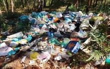 Lâm Đồng chỉ đạo xử lý ngay vụ rác bủa vây Đà Lạt