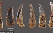Hang động bí ẩn hé lộ thế giới 100.000 năm của loài người khác
