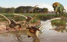 Quái vật ăn thịt nửa vịt, nửa thằn lằn hiện ra trong mộ đá 67 triệu năm