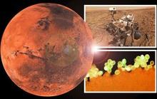 Phát hiện vật liệu sự sống của trái đất trên một hành tinh khác