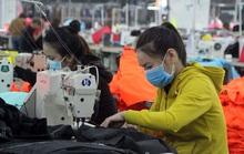 Bình Định: Giải quyết cho 1.160 lao động tạm thời dừng đóng BHXH