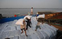 """Thủ tướng """"chốt"""" xuất khẩu 400.000 tấn gạo trong tháng 4"""