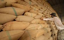 Hạn ngạch 400.000 tấn gạo, vừa mở đã hết