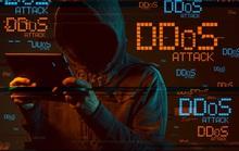 Nền tảng học - thi trực tuyến bị tấn công liên tiếp